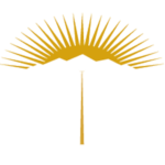 RTC Approved Limo Service